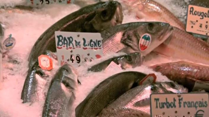 Lecourbe Marée, uma das melhores peixarias de Paris - Conexão Paris